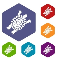 Turtle icons set vector image vector image