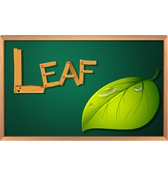A blackboard with a leaf vector