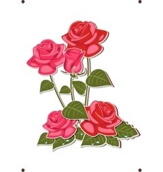 a bouquet of red and pink roses vector image vector image