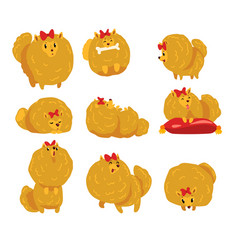 Cute funny pomeranian dog character in different vector