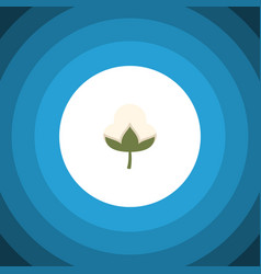 isolated bud flat icon cotton element can vector image