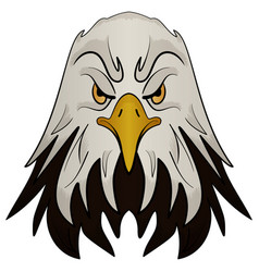 mascot head of an eagle vector image vector image
