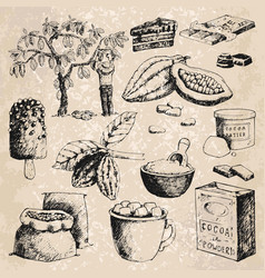 cocoa products hand drawn sketch vector image