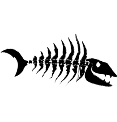 Fish bones vector image
