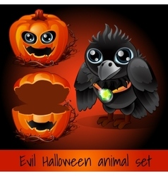Ppumpkin and crow sullen on a dark red background vector