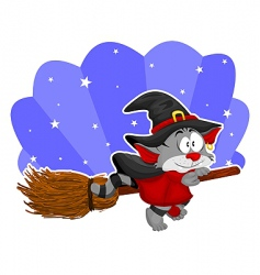 cat on the broom vector image vector image