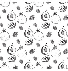 Seamless pattern with the image of fruit vector