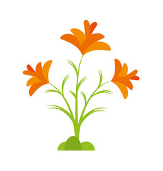 freesia flower spring natural vector image vector image