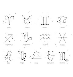 horoscope all zodiac signs in constellation style vector image