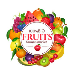 Berries and fruits round poster vector