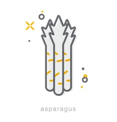 Thin line icons asparagus vector