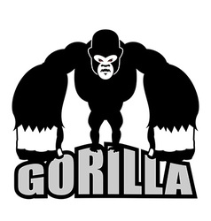 Angry gorilla Aggressive big monkey irritated wild vector image vector image
