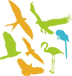 Birds digital clipart 2 vector
