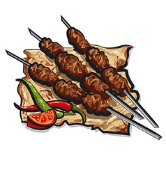 kebab with pita vector image
