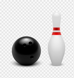 Tenpin Bowling Icon Set vector image