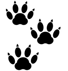 Trace animal on white vector