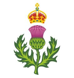 Badge of scotland vector