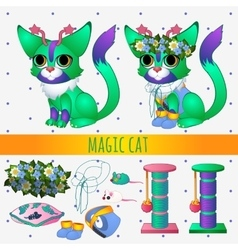 Green magic cat with toys and summer accessories vector