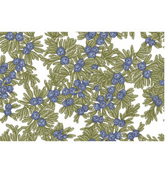 Juniper tree seamless pattern hand drawn vector
