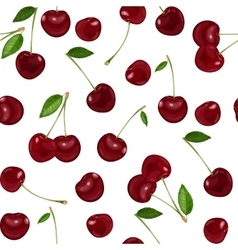 Seamless background with cherry vector image vector image