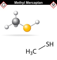 Methyl mercaptan molecule vector