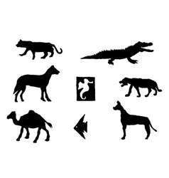 Set of different animals vector