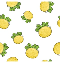 Seamless pattern of melon vector