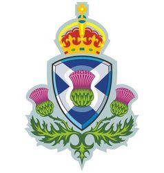 symbol of scotland vector image