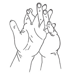 Intertwined fingers vintage engraving vector