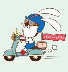 Delivery rabbit vector