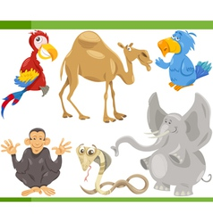 wild animals cartoon set vector image