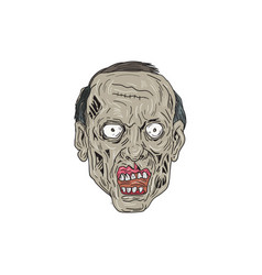 zombie head front drawing vector image vector image