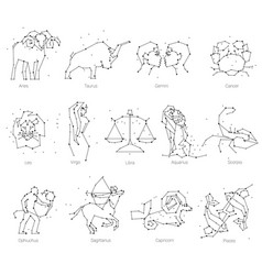 Horoscope all zodiac animals in constellation vector
