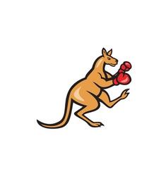 Kangaroo kick boxer boxing cartoon vector