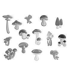 Mushrooms edible champignons morel icons vector