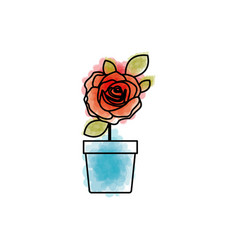 Watercolor drawing of flowered red rose with vector
