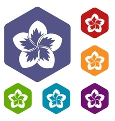 Frangipani flower icons set vector