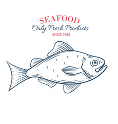 hand drawn fish icon vector image vector image