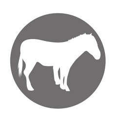 horse silhouette isolated icon vector image vector image