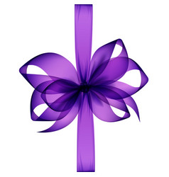 purple bow and ribbon top view on white background vector image