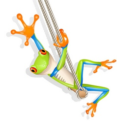 tree frog on a swing vector image vector image