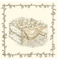Wooden box with ripe apples vector