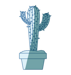 blue shading silhouette with cactus with two vector image vector image