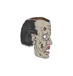 zombie head side drawing vector image