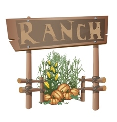 Entrance to ranch harvest of corn and pumpkins vector image