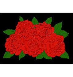 Red roses with green leaves close-up vector