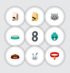 flat icon animal set of kitty collar dog food vector image