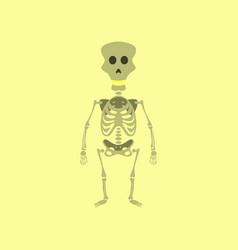 Flat on background of skeleton halloween monster vector