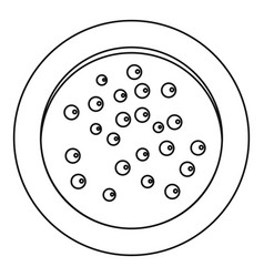 Heap of pepper peppercorns on a plate icon vector