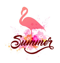 Pink flamingo and lettering vector